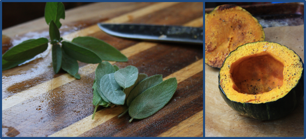 herbs and squash