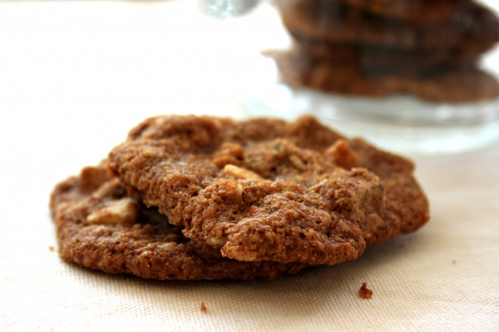 Lacy oatmeal chocolate chip cookies with coconut and wheat germ