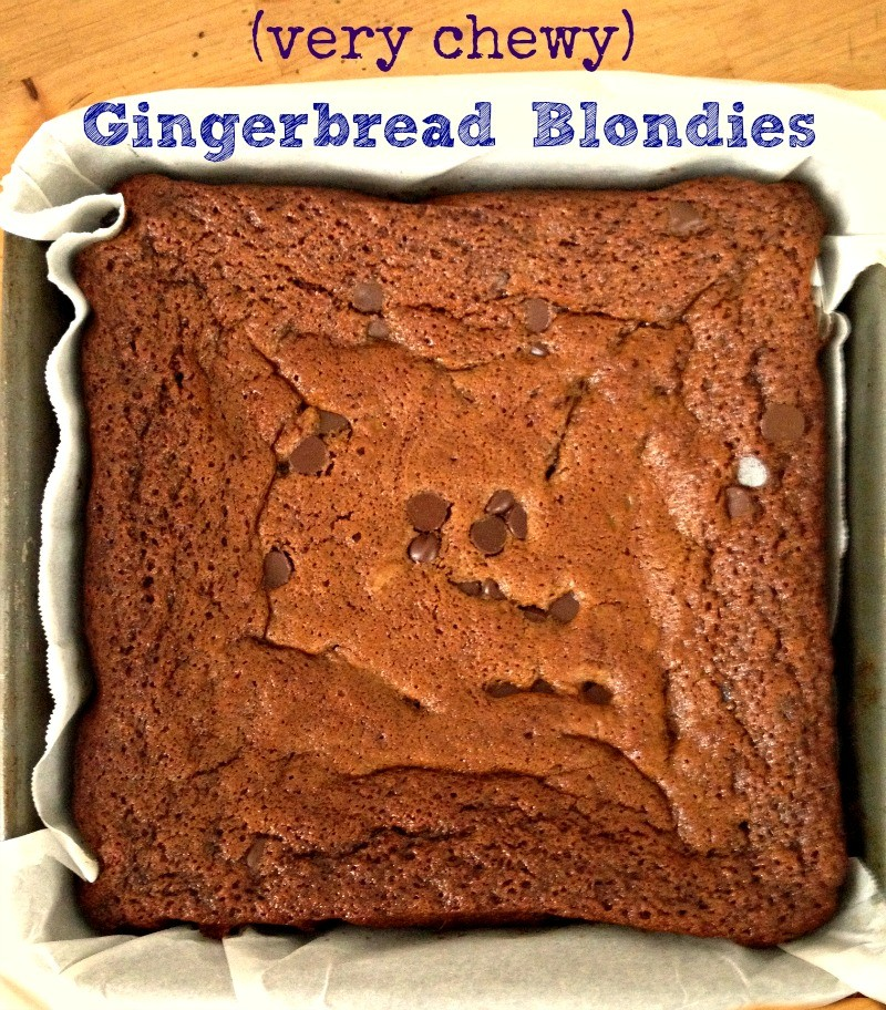 chewy gingerbread blondies