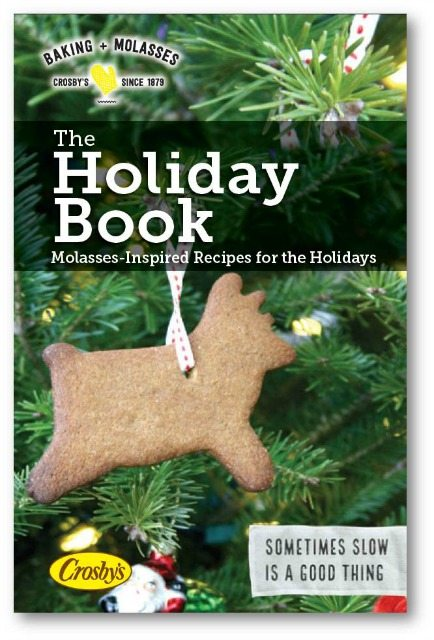Holiday eBook: 19 recipes for cookies, candied nuts, warming drinks and more. Free. Easy to download.