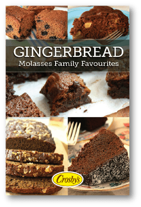 New Gingerbread eBook 2014 sm